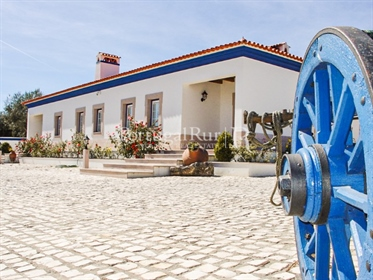 The 'Quinta da Horta do Serrado' is located in Alto Alentejo, with a large dwelling house
