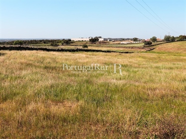The farm of 'Parque Verdejante' with an area of 4 hectares (40,000 m2) is located near the