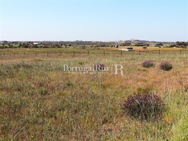 The farm of 'Malhada Velha' with an area of 7 hectares (70.000 m2) is located near the vil