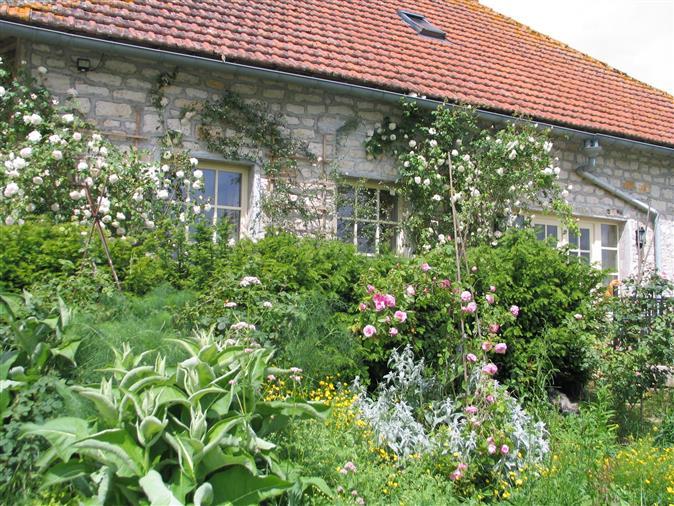 Maison de campagne unique dans un endroit calme en Bourgogne.
