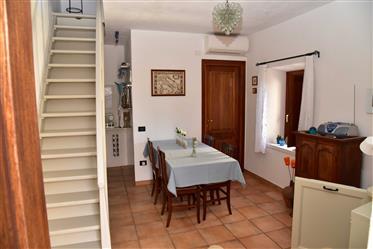 Casa : 49 m²