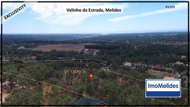 Terreno de Maria, Melides