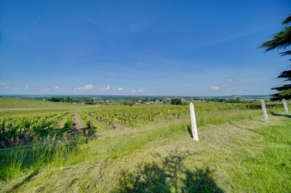 Beautiful wine estate with panoramic views only 35 minutes from Bordeaux.