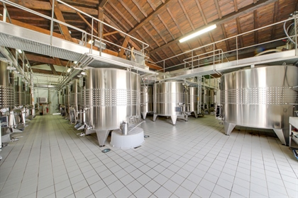 An exception vineyard in the up-and-coming Côtes de Blaye / ...