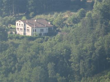 Large house with 2 gîtes and 12x5 swimming pool, in 50 acres of garden, field and forest.