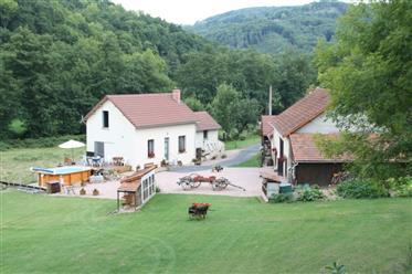 Jedinstvena lokacija, lijepa farma s 2 Gîtes