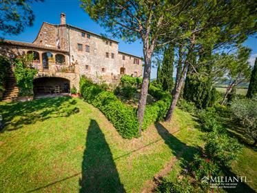 Vendesi casolare autentico con piscina ed 1 ha di terreno tra Volterra e San Gimignano
