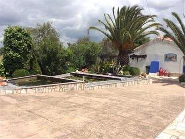 House: 229 m²