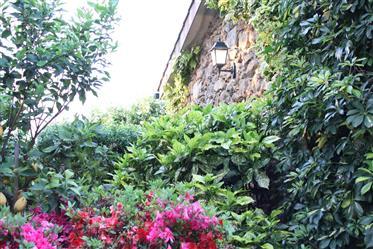 Quintinha rústica com 2 casas em pedra, em V.N. De Cerveira