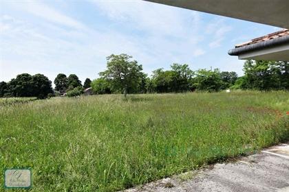 Nel cuore della zona del Prosecco un'interessante proposta con 2 immobili e 6000 m2 di ter