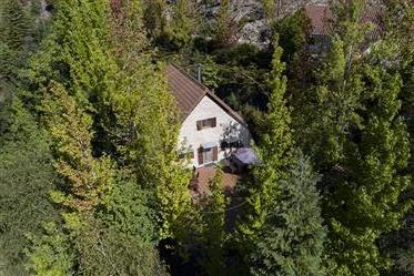 House: 290 m²