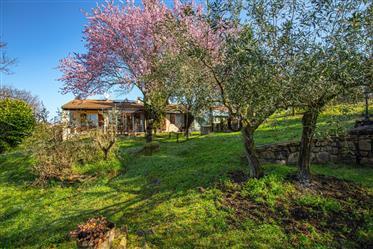 Propriete 4 Chambres 160M² Habitable 5510M² De Terrain Piscine Interieure