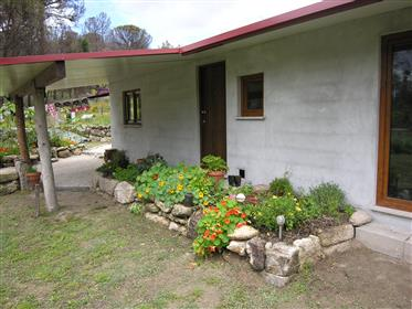 Off-Grid Organic Smallholding