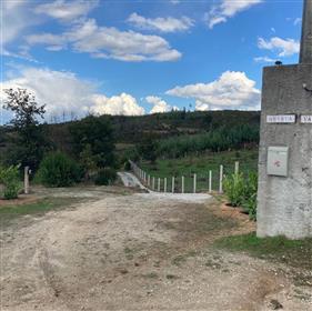 For sale: Quinta Vale Mendeles