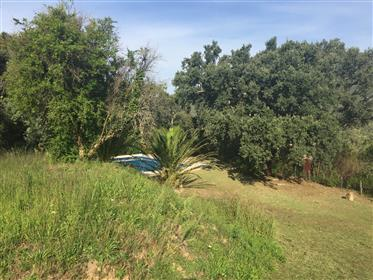 South Corsica, Hamlet of Vignalella, House for sale in beautiful location.