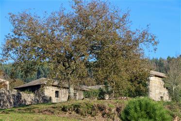 Quinta do Monte, Póvoa de Lanhoso