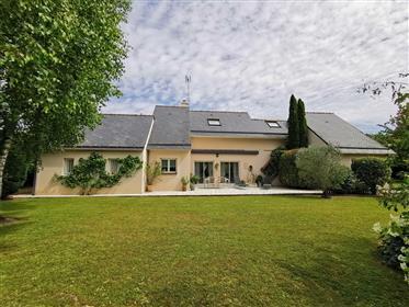 Maison T6 Souzay-Champigny