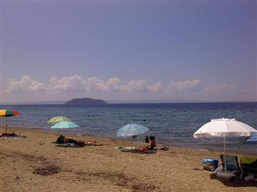 Front de mer Bungalow