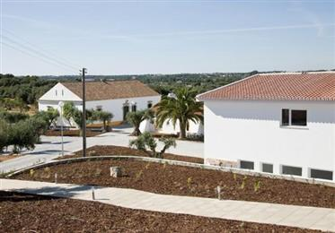 Terreno: 120.000 m²