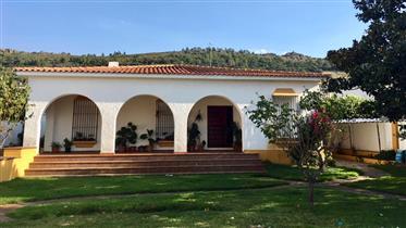 Huis: 275 m²