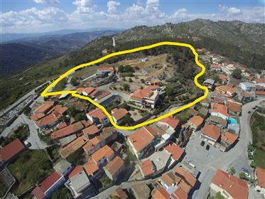 Maison : 250 m²