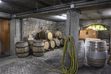 Beau Château ou Manoir à Chambéry