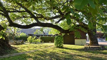 Kuća : 360 m²