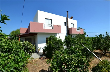 4 bedroom house with sea views and olive grove.