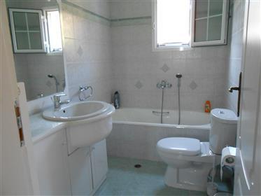 Maison : 120 m²