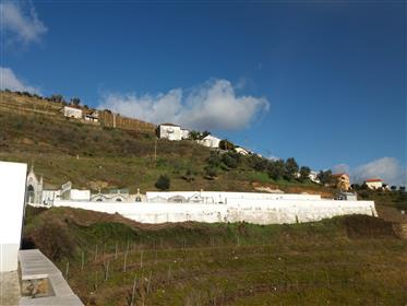 Quintinha Vinha da Porta em Sever - Vila Real