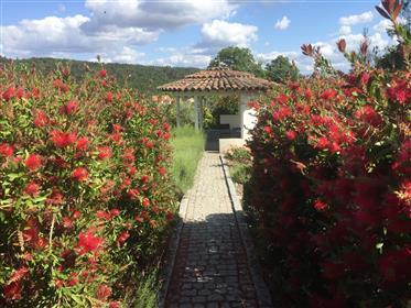 Πωλείται: το σπίτι των ονείρων μας στη βορειοανατολική Πορτογαλία