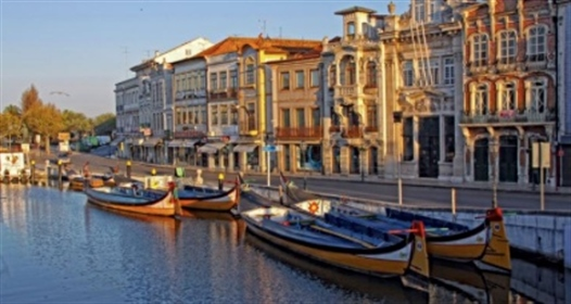 """Magnificent apartments in the center of the """"Portuguese Venice"""", Aveiro, Portugal"""