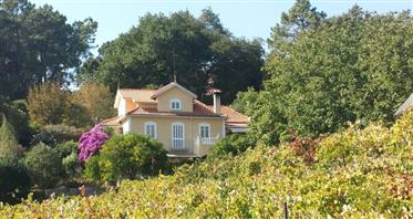 Beautiful Quinta/Finca In Middle Portugal