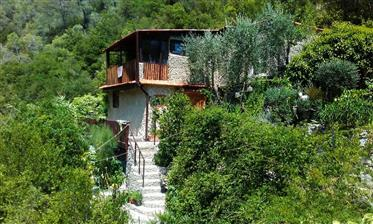 Charming house on the river near to Menton