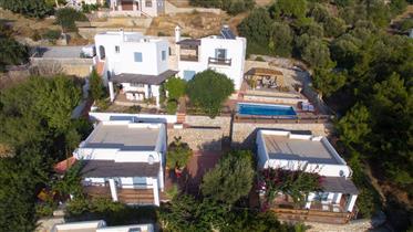 Magnifique propriété avec sa villa et ses 3 guest houses