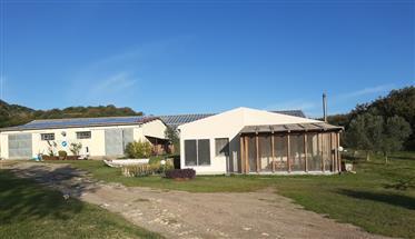 Sardinia house with 5.5 ha land & bathing lake, 15 min. From...