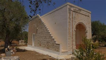 No sul de Puglia, entre as oliveiras...
