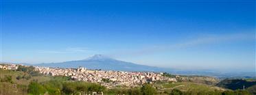 Montepinea1899
