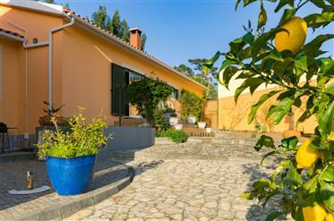 Εξοχική κατοικία 5 Υπνοδωματίων με μεγάλο κήπο