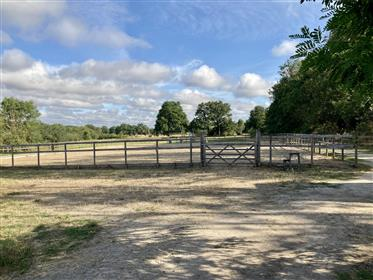 Equestrian property, Vienne, France - horse & rider heaven