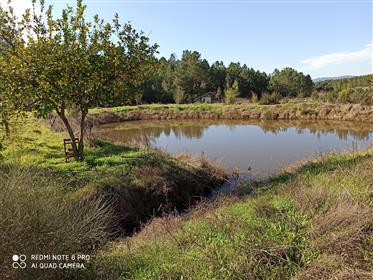 Permaculture projekt farma