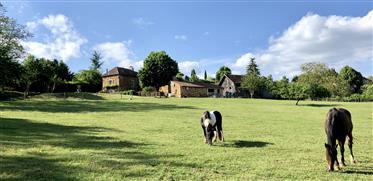 Charmosa Casa com Piscina, Gite e 3 acres