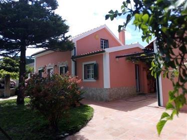Das Dorfhaus - Tornada