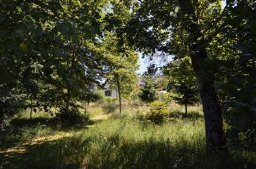 Proprietà moderna di lusso unica su 6500m di terreno forestale privato