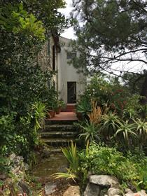 House in Afife, Viana do Castelo with sea view Plus 1.5 acres of forest land