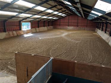 Scuola equestre/indoor