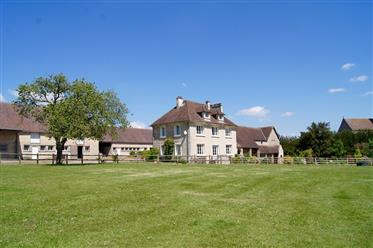 Beautiful Equestrian Property / Potential Vineyard