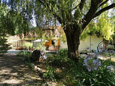 Te koop: Haus des Blumenstraußes