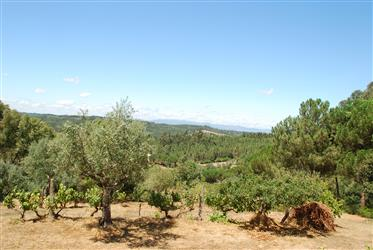 Krásná, moderní quinta s nádherným výhledem v zeleném srdci Portugalska
