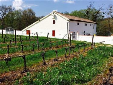 Fazenda renovada